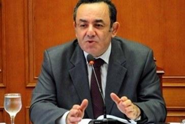 الشوبكي لـ«الغد»: قرار «تشريعية البرلمان المصري» انتصار لدولة القانون