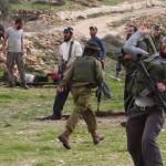 مستوطنون يعتدون على قرية «التوانه» جنوب الخليل