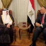 مصر والسعودية تتفقان على مواصلة جهود مكافحة الإرهاب