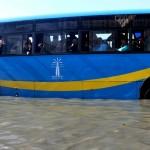 برغم شوارعها الغارقة بالمياه.. الإسكندرية تنتخب