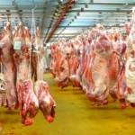 الأمم المتحدة تطالب بخفض استهلاك اللحوم للحد من الاحتباس الحراري