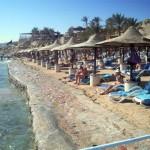 برلماني بريطاني يطالب برفع حظر السفر عن شرم الشيخ: لا تتركوها للتطرف