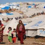الأمم المتحدة تحث القطاع الخاص على التبرع لإيواء اللاجئين