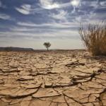 أستراليا: ظاهرة