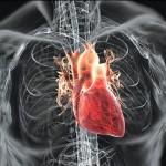 فيديو دراسة.. الجلوس طويلا يعرض للإصابة بأمراض القلب