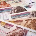 البنك المركزي المصري يبقي على استقرار الجنيه المصري في العطاء الرسمي