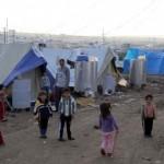 لاجئون سوريون يزرعون الحشيش في لبنان