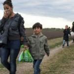 المجر توجه اتهامات بالقتل إلى 8 تسببوا في مقتل 71 مهاجرا