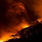 حرائق الغابات تدمر 100 منزل في الكريسماس بأستراليا