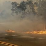 جنوب أفريقيا: مقتل 9 أشخاص و1500 أصبحوا بلا مأوى في 5 حرائق