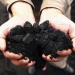 لجنة حكومية توصي بتوقف ألمانيا عن حرق الفحم بحلول 2038
