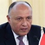 وزير خارجية مصر يدعو  «النواب الليبي» لمنح الثقة لحكومة الوفاق