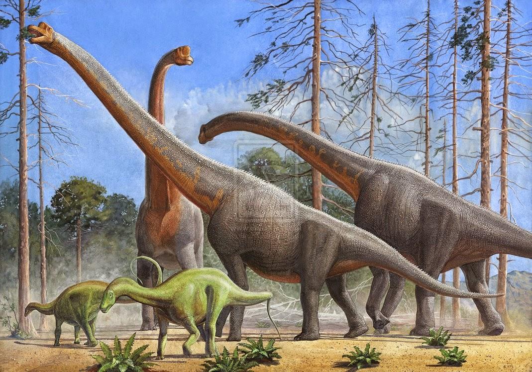 اكتشاف دلائل وجود آثار لديناصورات آكلة للعشب في فلسطين