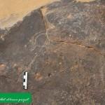 الكشف عن أقدم نقوش صخرية بمقابر النبلاء في أسوان