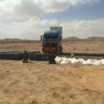 صور| القوات المسلحة المصرية تضبط شحنة متفجرات في سيناء