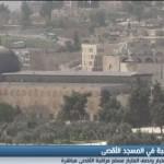 فيديو|الأردن يعتزم تركيب كاميرات لرصد انتهاكات المستوطنين في باحات الأقصى