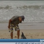 فيديو  طائر بطريق يسافر كل عام لزيارة الرجل الذي أنقذه من الموت