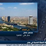 فيديو| تقليص عطاءات «المركزي المصري» محاولة لتحجيم الفروقات السعرية