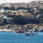 العثور على 11 جثة من ركاب المروحية النرويجية المحطمة