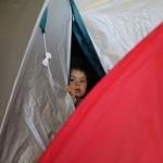 مؤتمر التعداد السكاني الفلسطيني في لبنان يكشف أرقام اللاجئين وسكان المخيمات