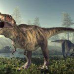 جمجمة تكشف معلومات عن ديناصورات ضخمة طويلة العنق