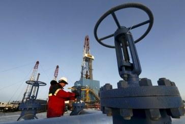 وزير الطاقة الإماراتي: بدأنا خفض إمداد النفط وفقا لاتفاق أوبك