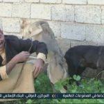 فيديو| عراقي يربي ذئبين في منزله ويسمح لأطفاله باللعب معهما