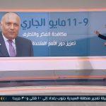 فيديو  كيف تستفيد مصر من رئاسة اجتماعات مجلس الأمن الدولي؟