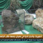 فيديو| أحجار نادرة في معرض جمعها طلاب الجامعة اليسوعية