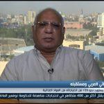 فيديو  نادر نور الدين يكشف أسباب الفجوة الغذائية في العالم العربي