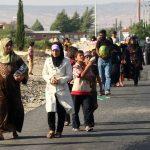 فيديو| متخصص: لا يوجد تشريع في مصر يحمي حقوق اللاجئين
