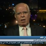 فيديو  دبلوماسي سابق يكشف أبرز ملامح الرؤية المصرية لعملية السلام