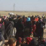 الأمم المتحدة تتوقع بدء عودة السكان إلى الفلوجة بحلول أغسطس