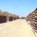 فيديو  مكافحة الفساد في مصر: اختلاس أكثر من 70 مليون جنيه بصوامع القمح