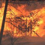 حريق هائل في غابات لوس أنجلوس يقضي على 22 ألف فدان