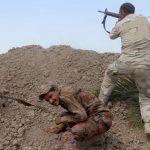 فيديو| تركيا تسعى للسيطرة على «الموصل»