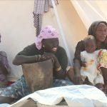 الأمم المتحدة تعلق المساعدات لولاية بورنو في نيجيريا