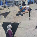 مصريون ينقذون كلبا.. قصة أوروبية على كورنيش مدينة الإسكندرية