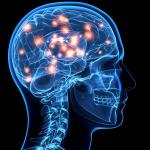 دراسة تكشف مخابئ لجينات متصلة بالاكتئاب في المخ