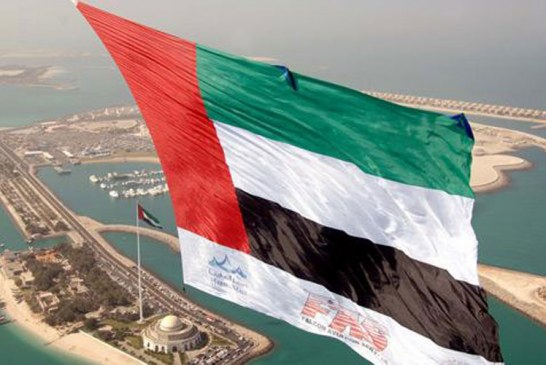 الإمارات تتوقع عقد صفقات بـ5.4 مليار دولار في معرض دفاعي