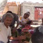 فيديو | «القات» متوفر في اليمن رغم نقص الماء والكهرباء