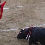 صينيون يمزجون بين الكونج فو ومصارعة الثيران