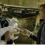 «دبي السينمائي» يعلن «الدفعة الأولى» لأفلام مسابقة المهر الطويل