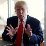القرد «ملك التوقعات» في الصين يتكهن بفوز ترامب برئاسة أمريكا