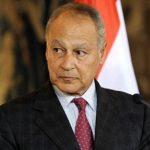 أبو الغيط: مقتل صالح علي يد الحوثيين ينذر بانفجار الأوضاع في اليمن