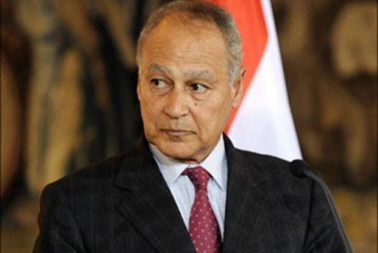 أبو الغيط: التفكير في مسار بديل عن «حل الدولتين» مضيعة للوقت