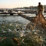 «صناعة السم».. وثائقي لقناة «الغد» عن تلوث مياه النيل
