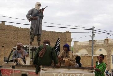 مقتل 14 مسلحا مواليا للحكومة في عملية انتحارية بـ«مالي»