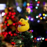 فيديو| أشجار عيد الميلاد تضئ شوارع الأردن احتفالا بالأعياد