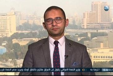 فيديو| محلل: الإصلاحات الاقتصادية في مصر تفيد المستثمر والمواطن